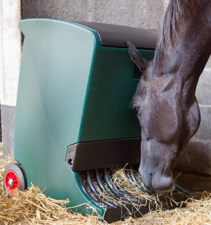 horse slow hay feeder with rubber